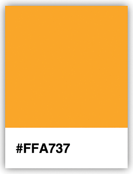 A figure shows a color palette with the hex code #FFA737 mentioned below the palette.